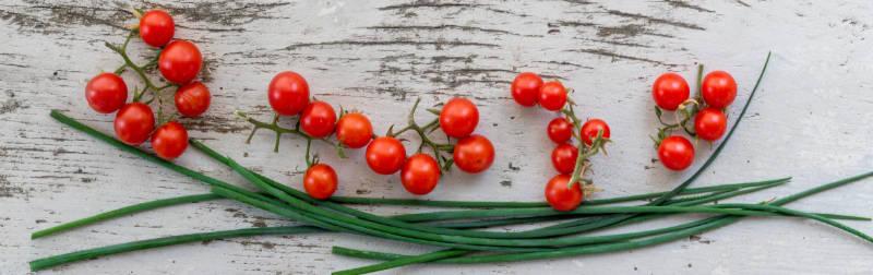Nourriture saine et santé